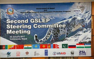 Ministers uphold their support for snow leopard conservation