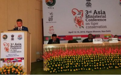 Snow Leopards on the Agenda at 3rd Asia Ministerial Conference on Tiger Conservation