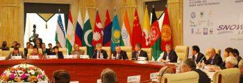 1-й Международный форум по снежному барсу и экосистемам (2013)